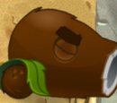 Kokosnusskanone