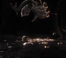 Curse Scrolls/Gallery