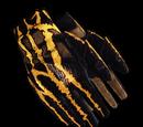 Перчатки элиты