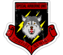 Special Airborne Unit