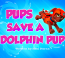 Pups Save a Dolphin Pup's Pages
