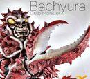Bachyura