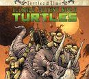 Teenage Mutant Ninja Turtles: Turtles in Time (IDW)
