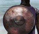 Titan Shield