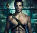 Temporada 1 (Arrow)