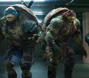 Teenage Mutant Ninja Turtles/Wikia-Kritik