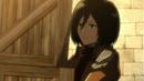 Mikasa OVA 2.png