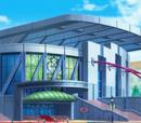 Exhibición/Gran espectáculo Pokémon