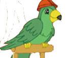 Noisy Parrot
