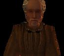 Бретони (Morrowind)