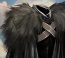 Benjen Stark's Black Cloak
