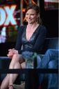 24 LAD- Mary Lynn Rajskub at 2014 show announcement panel.jpg