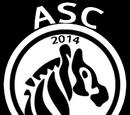 Aarhus Soccer Club