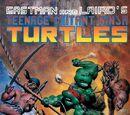 Turtles Take Time
