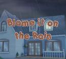 Blame it on the Rain