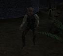 Morrowind: Nebenquests