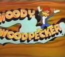 Woody Woodpecker (1995 film)