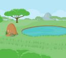 Zani Safari