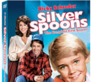 Silver Spoons (1982)