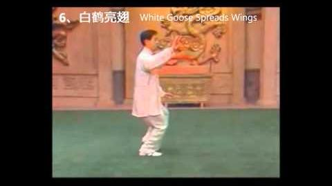18-Form Chen-Style Taijiquan