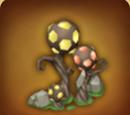 Mysteriöse Pflanze