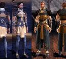 Тканевая одежда Dragon Age: Origins - Awakening