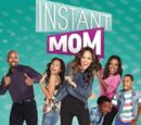 Instant Mom (TV series)