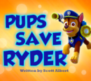 Pups Save Ryder