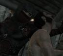Контракт: вбити Нарфі