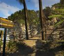 Paradise Survival Camp