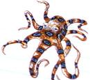 Octopus Cult