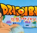 Dragon Ball KS