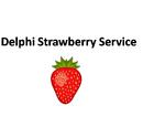 Delphi Strawberry Service