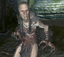 Skyrim: Humanoidy