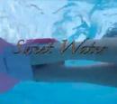 Sweet Waters