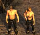 Одежда Wasteland 2