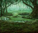 Wul Swamp