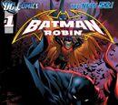 Batman y Robin (Volumen 2)