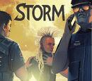 Storm Vol 3 7