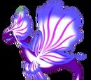 Dragon Orchidée