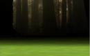 Serene Forest Stage Tekken 2 Yoshimitsuspecialpage.png