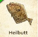 Heilbutt.png