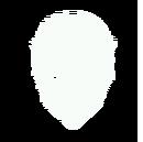 Mask-techlion.png