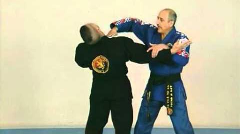 Hapkido - Démonstration des techniques de self-défense