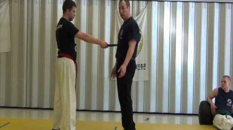Hapkido - Défense contre les lames et armes de poing