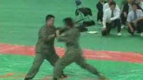 Hapkido - Démonstration de Combat