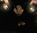 Tiger Statue room