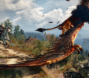 TheBlueRogue/New Gameplay and Details Revealed for The Witcher 3: Wild Hunt