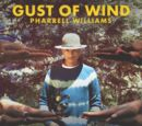Gust of Wind