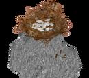 Rock Nest (SilesianTomcat)